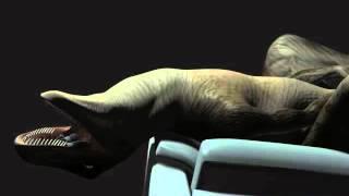 getlinkyoutube.com-raptor couch vore