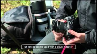 "getlinkyoutube.com-Canon EOS M3 Movie – ""Making of: Another Diary"""