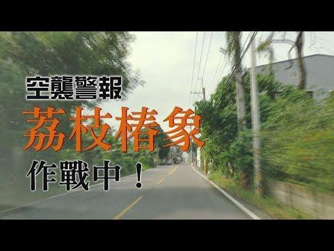 我們的島 空襲警報-荔枝椿象 作戰中!(第1009集 2019-06-17) - YouTube