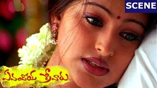 getlinkyoutube.com-Srikanth, Sneha Romance  - Evandoi Srivaru Movie Scenes