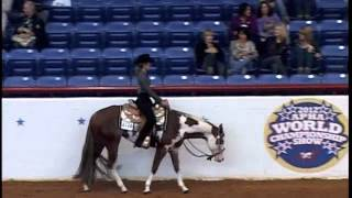 getlinkyoutube.com-No Doubt Absolute 2009 APHA/AQHA Stallion