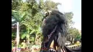 Singo Barong sesi Kesurupan