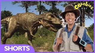 Tyrannosaurus Rex Facts - Andy's Dinosaur Adventures - CBeebies