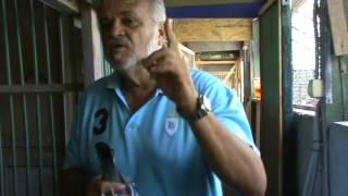 Maestrul columbofil dl Carmazan Ioan Romania prezentare lot porumbei participanti Tartu editia 2016