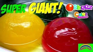getlinkyoutube.com-SUPER GIANT ORBEEZ  Polymer Balls Kids Science Worlds Biggest Orbeez Ever - Kiddie Toys