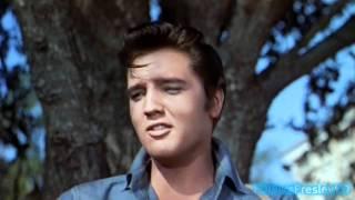 getlinkyoutube.com-Elvis sings Gotta Lotta Living To Do (2K HD)