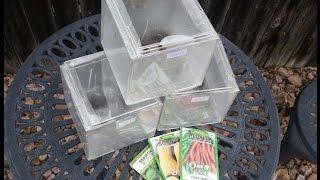 getlinkyoutube.com-Mini Greenhouse DIY