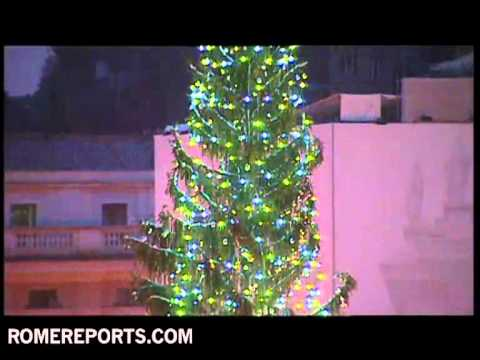 Vatican lights up Christmas tree