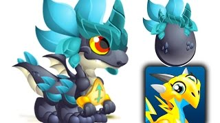 getlinkyoutube.com-How to Get Zodiac Sagittarius Dragon 100% Real! Dragon City Mobile!