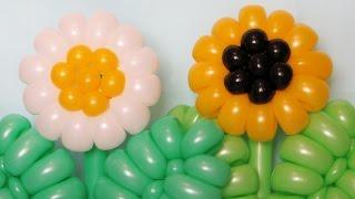getlinkyoutube.com-Ромашка Подсолнух из шаров / Daisy Sunflower of balloons (Subtitles)