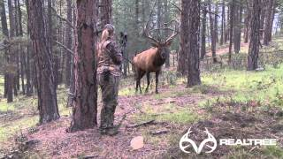 getlinkyoutube.com-15-Yard Files: Female Bowhunter Stares Down Giant Bull Elk at 4 Yards