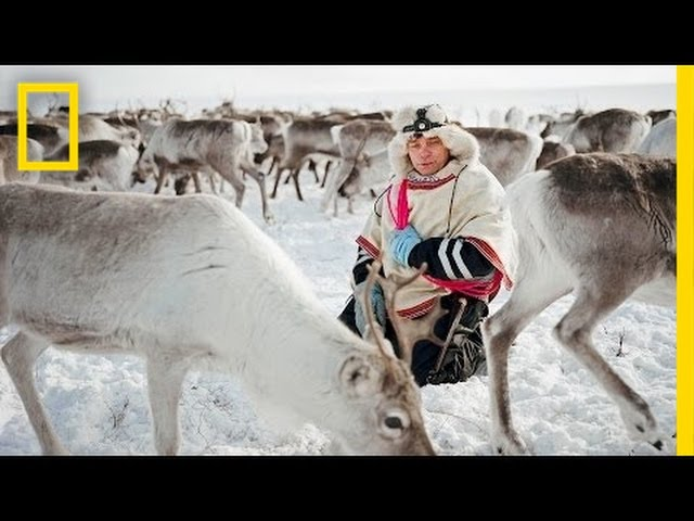 The Reindeer People