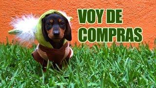 getlinkyoutube.com-ME LLEVARON DE COMPRAS A LA TIENDA DE MASCOTAS | LOS POLINESIOS VLOGS