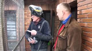 getlinkyoutube.com-Hans Hirn (Niemcy) - część 2 - hodowla - 04.02.2014r.