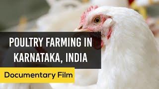 getlinkyoutube.com-Poultry Farming in Karnataka - English