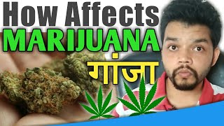 How Affect Weed To Human Body || Hindi