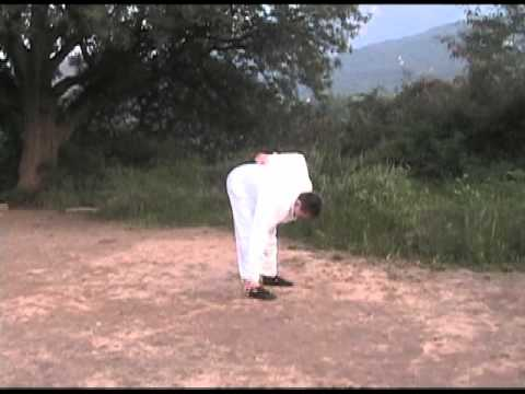 Wild Goose Qigong 1st & 2nd 64 Forms