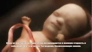 getlinkyoutube.com-Как Аллах создает человека в утробе матери