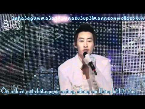 [SJF Vietsub + kara] Super Junior - Super Show 3 in Japan - No other (OFFICIAL)
