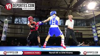 Hamdi Alli vs Uriel Alvarez Chicago Harrison Park Boxing Event