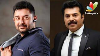 getlinkyoutube.com-Mammootty and Aravind Swamy to Share Screen again   Hot Malayalam Cinema News