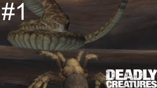 getlinkyoutube.com-Let's Play Deadly Creatures Part 01: Spider Panic