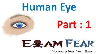 Physics Human Eye part 1 (Eye components) CBSE class 10 X