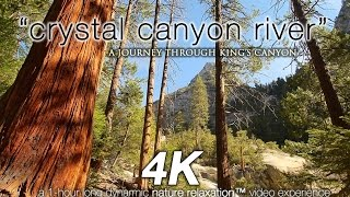 "getlinkyoutube.com-""Crystal Canyon River"" 1 HR 4K UHD Nature Relaxation™ Video - King's Canyon NP"