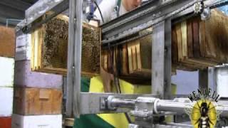 getlinkyoutube.com-Honey Extraction