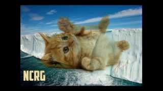 getlinkyoutube.com-Corduroy Mavericks - Stop Before You Start (Andrew Lozano Refresh Remix)