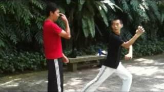 getlinkyoutube.com-Hung Gar San Shou Training- 洪拳散手