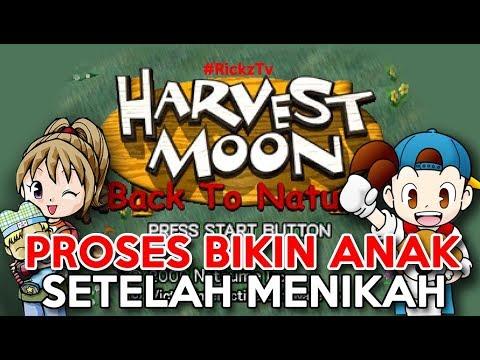 Cara Agar Cepat Hamil Harvest Moon Back To Nature