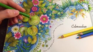 getlinkyoutube.com-SECRET GARDEN | The Magical Water Lily Pond | Coloring With Colored Pencils