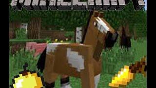 getlinkyoutube.com-Breeding Horses in Minecraft 1.8