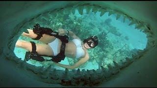 getlinkyoutube.com-GoPro: Director's Cut - Shark Riders