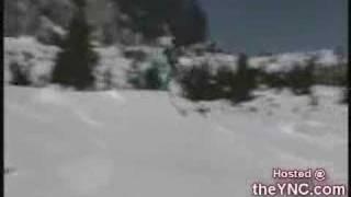 פספוסי שלג