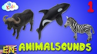 getlinkyoutube.com-Schleichtiere, wildlife animals, farm animals, animal names and animal sounds auditioned (english)