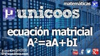 Imagen en miniatura para Ecuación matricial 01