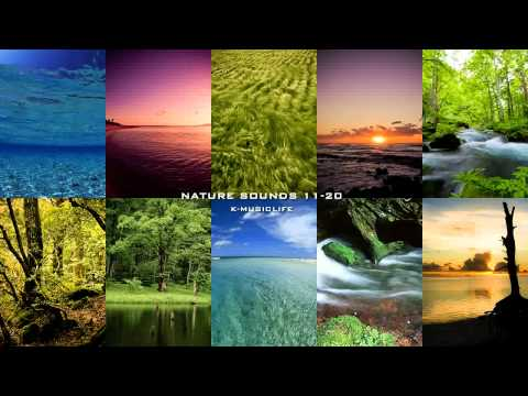 Nature Sound Collection 11-20 - Super Long Nature Sound
