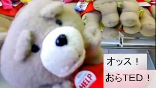 ted 2 get