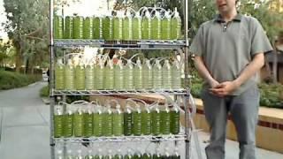 getlinkyoutube.com-An Algae Bioreactor from Recycled Water Bottles