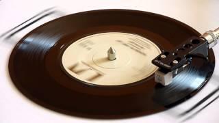 Don McClean   American Pie Parts 1 & 2   Vinyl Play