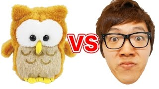 getlinkyoutube.com-ヒカキン vs ものまねフクロウ!ビートボックスバトル!