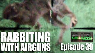 getlinkyoutube.com-Rabbiting with Airguns  - AirHeads, episode 39