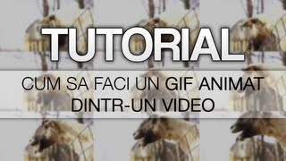Tutoriale - Photoshop: Transforma un video intr-un GIF Animat (www.gric.ro)