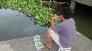 getlinkyoutube.com-คุยกับคนตกกุ้งริมแม่น้ำแม่กลอง