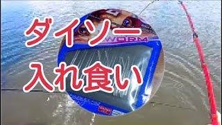 getlinkyoutube.com-釣り ダイソー100円竿とダイソー100円ワームのコラボレーション!
