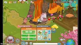 getlinkyoutube.com-How to decorate Jamaa and other peoples dens!- Animal Jam