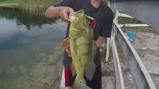 getlinkyoutube.com-Epic South Florida freshwater fly fishing for big largemouth/peacock bass throughout the 2015 summer