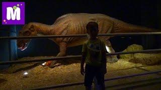 getlinkyoutube.com-#6 Стамбул идем парк динозавров купим чемодан Микки Маус поиграем в лунном песке Jurassic Land